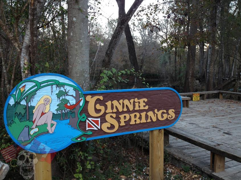 ginnie springs pic